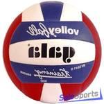 Мяч волейбольный Gala Training Heavy