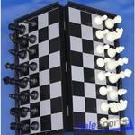 Шахматы-шашки магнитные пластиковые с доской 25 см, ШП