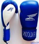 Перчатки боксерские Falcon TS-BXGC5