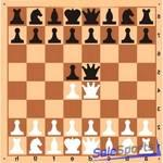 Доска шахматная демонстрационная малая Люкс, ШП