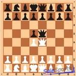 Доска шахматная демонстрационная цельная 100*100см, ШП