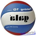 Мяч волейбольный Gala Training 10 BV5561S