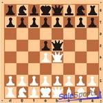 Доска шахматная демонстрационная 80*80см, ШП