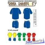 Форма волейбольная, Спортивная Линия, модель №22, женская форма.