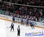 Сетка заградительная для хоккейных площадок, Спортстандарт