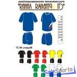 Форма волейбольная, Спортивная Линия, модель №27, женская форма.
