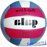 Мяч волейбольный Gala Pro-Line Colour BV5211L