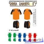Форма волейбольная, Спортивная Линия, модель №12, мужская форма.