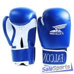 Боксёрские перчатки Falcon BXGC3